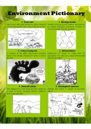 Environment Pictionary Part I