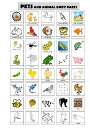 English Worksheet: Pets and animal body parts - to fill in