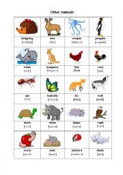 English Worksheet: Other Animals