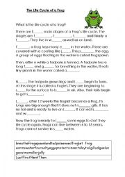 English Worksheet: The Life Cycle of A Frog