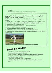 English Worksheet: Cricket