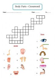 English Worksheet: Body Parts - Crossword