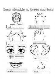 English Worksheet: Head, Shoulders, Knees and Toes