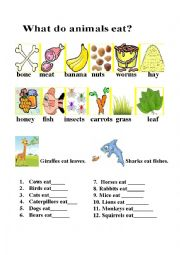 English Worksheet: what do they eat
