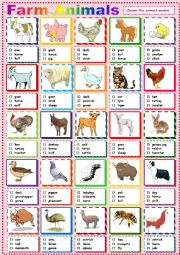 English Worksheet: Farm Animals Pictionary.