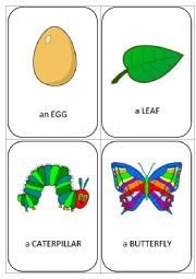 English Worksheet: The very hungry caterpillar - FLASHCARDS
