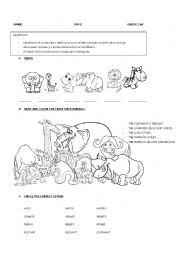 English Worksheet: Wild Animals Vocabulary Test