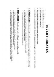 English Worksheet: GROUPS OF INVERTEBRATES
