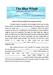 English Worksheet: Blue Whale Listening Worksheet