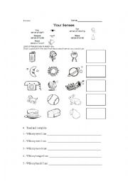five sense worksheet new 473 five senses worksheets esl. Black Bedroom Furniture Sets. Home Design Ideas