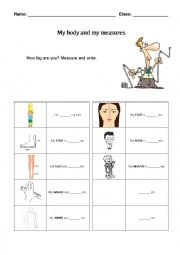 english worksheets body measurement. Black Bedroom Furniture Sets. Home Design Ideas