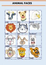 English Worksheet: ANIMAL FACES
