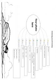 English Worksheet: Introducing yourself mindmap