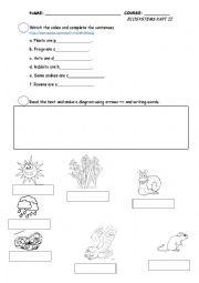 English Worksheet: Ecosystems Part 2