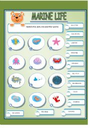English Worksheet: MARINE LIFE 2