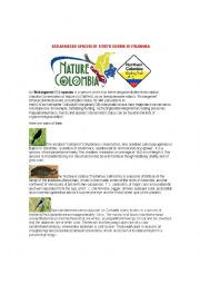 English Worksheet: Endangered Species Colombia