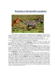 English Worksheet: Ielts reading comprehension