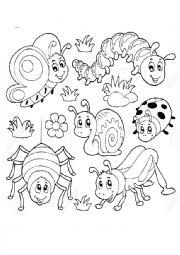 English Worksheet: Bugs and its jar
