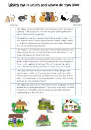 English Worksheet: Describe the cats and where they live