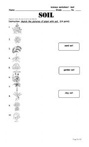 English Worksheet: soil worksheet
