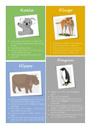 English Worksheet: Animal facts - Koala, Dingo, Hippo, Penguin (1/2)