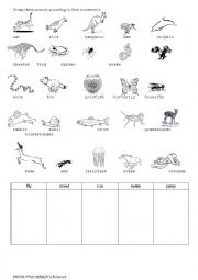 english worksheets animal movement. Black Bedroom Furniture Sets. Home Design Ideas