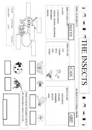 English Worksheet: The insects