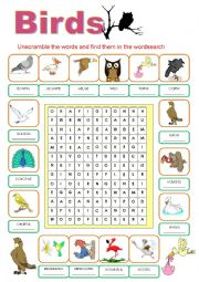 English Worksheet: BIRDS WORDSEARCH