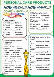 English Worksheet: Personal Care Products/ any-a-some-how much-how many