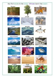 English Worksheet: Habitats - SPEAKING activity