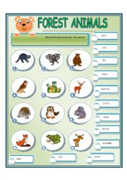 English Worksheet: FOREST ANIMALS