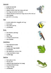 English Worksheet: Classification of Animals. Text
