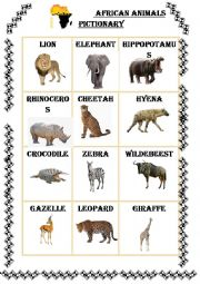 English Worksheet: African Animals Pictionary