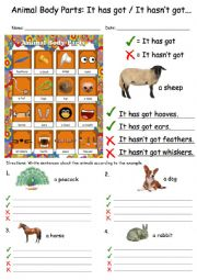 English Worksheet: Animal Body Parts: It has got, It hasn�t got