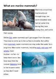 English Worksheet: Fun facts on marine animals worksheets