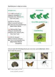 English Worksheet: FROGGIE FUN (a poem)