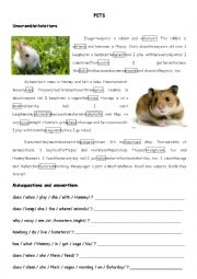 English Worksheet: Pets (a rabbit and a hamster)
