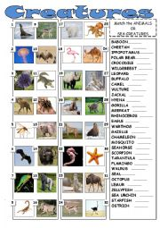 English Worksheet: Creatures of land and sea