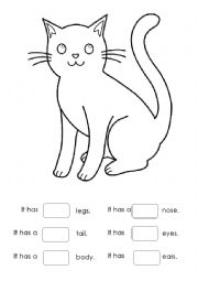 Winnie & the Cat Coloring WS - ESL worksheet by jennymul