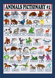 English Worksheet: Animals pictionary part 1