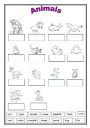 English Worksheet: Animals 2