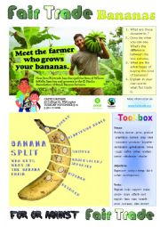 Fair Trade Bananas. Commenting pictures and giving one´s opinion.