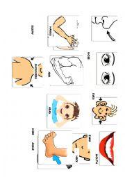 English Worksheet: Body Parts Flash Cards