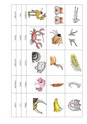 English Worksheet: ANIMAL BODY PARTS CUT AND STICK