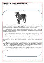 English Worksheet: READING COMPREHENSION AND INFORMATION TRANSFER