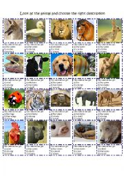 ANIMAL DESCRIPTION BODY PARTS MULTIPLE CHOICE