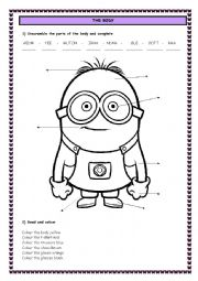 English Worksheet: THE BODY, CLOTHES AND COLOURS