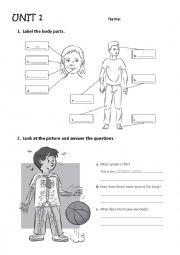 English Worksheet: body parts, systems and senses Exam