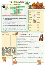 English Worksheet: Vocabulary Practice - Autumn