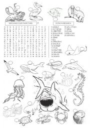 English Worksheet: SEA ANIMALS -  WORDSEARCH
